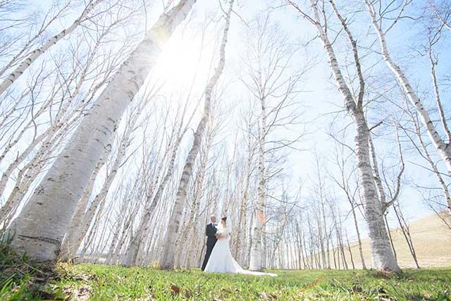 大人の結婚写真が運営するブログです