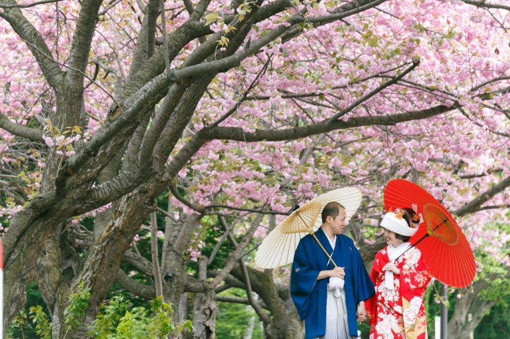 前撮り和装桜で撮影、JILL STUARTやアンテプリマ、NATURAL BEAUTY、ANTONIO RIVA(アントニオ・リーヴァ)、MIKA NINAGAWAなどのドレスや着物など1000着の衣装から選べます